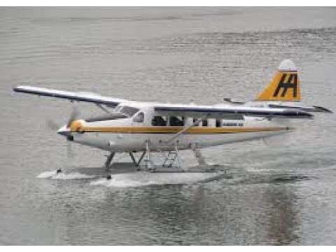 phi cơ : 비행기
